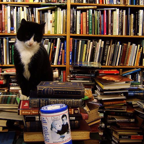 Acquista i libri usati della biblioteca di mercatopoli rovigo - Chi acquista mobili usati ...