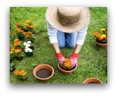 Fiera di giardinaggio a Ferrara