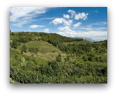 Parco regionale di Montevecchia