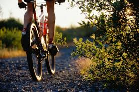 bici usate