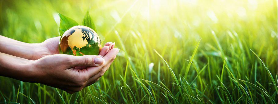 sostenibilita-ambientale-2019